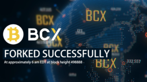 仮想通貨|BitcoinX(ビットコインエックス)の特徴と可能性
