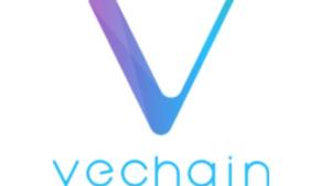 仮想通貨|VeChain(ヴィチェーン)の特徴と可能性